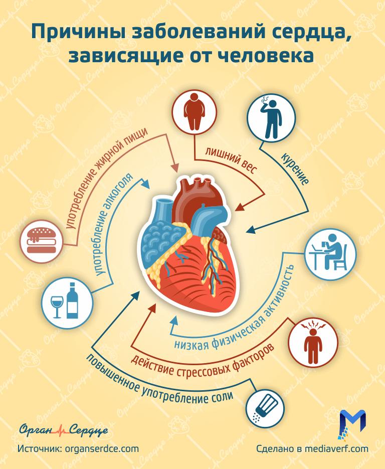 Факторы влияющие на здоровье сердца - Инфограифка