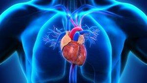 МРТ – эффективная диагностика сердца и его сосудов