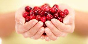 Плоды боярышника используются для лечения и профилактики многих заболеваний