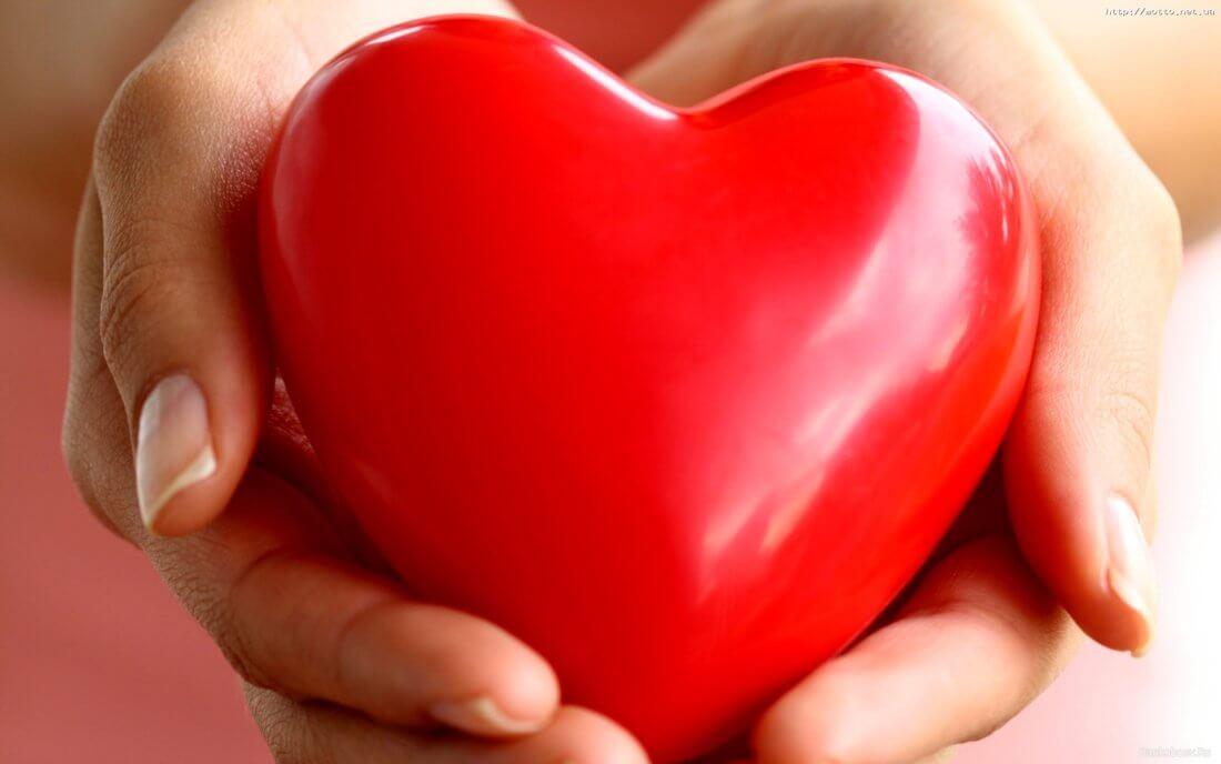Здоровье профилактика сердечных заболеваний