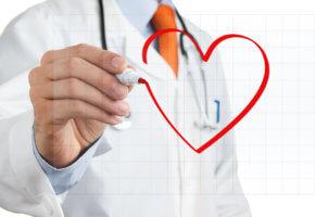 Во время процедуры ЭхоКГ оценивается работа сердца и сама сердечная мышца