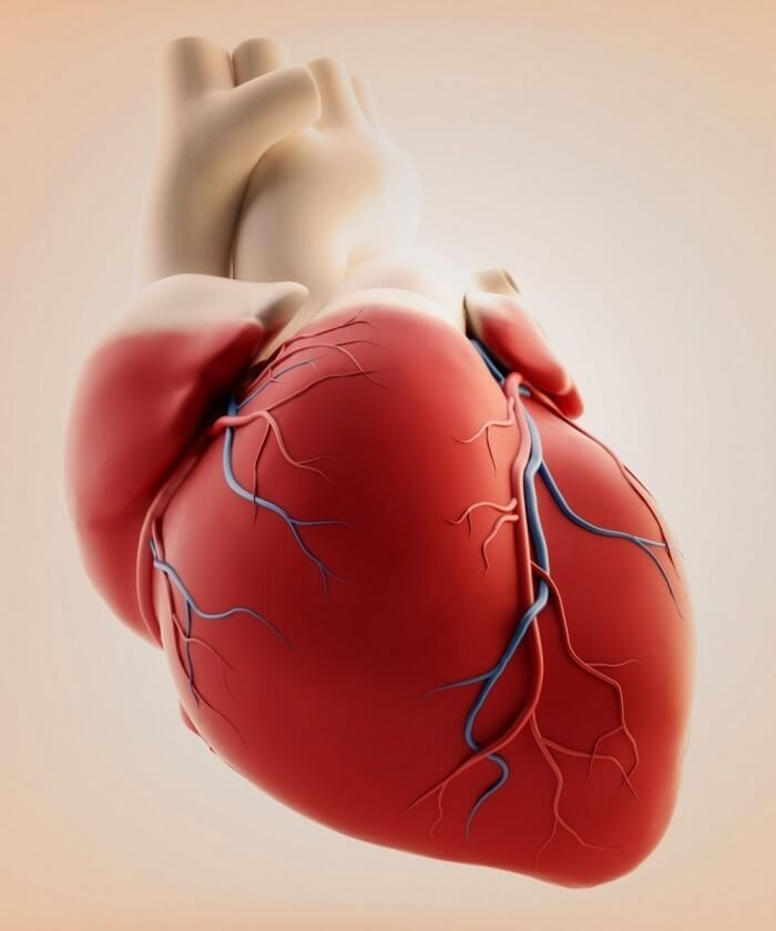 Операция, которая изменила все. Первая пересадка сердца в мире
