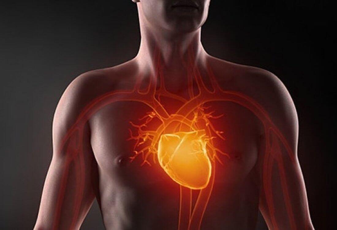 Что такое фиброз створок аортального клапана