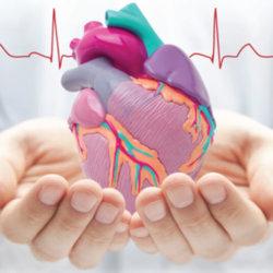 Что это такое полная блокада сердца и чем она опасна?
