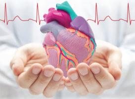 Полная блокада сердца является опасным патологическим нарушением