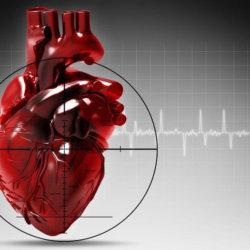 Трансплантология — это раздел хирургии о пересадке органов