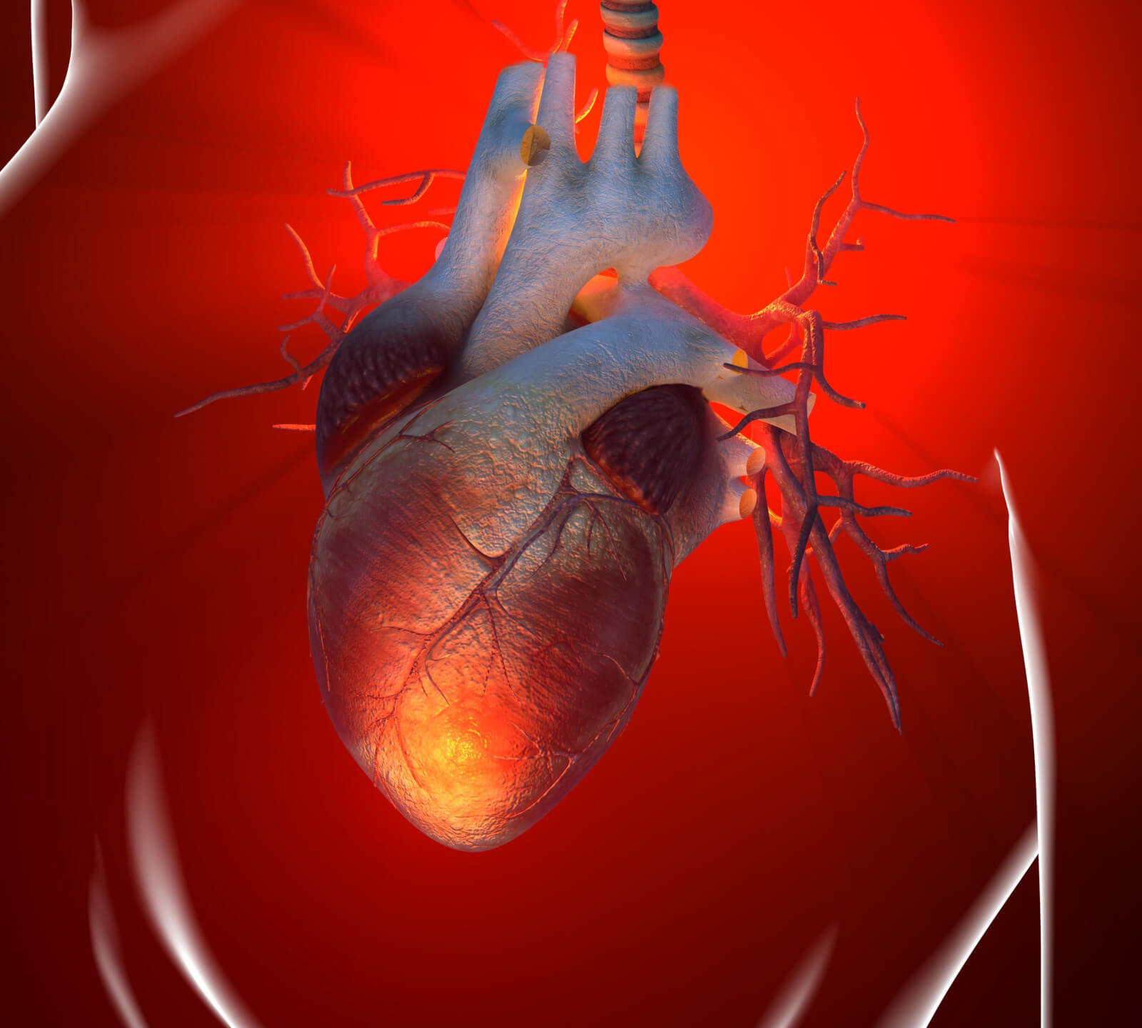 Диета после инфаркта - Evehealth