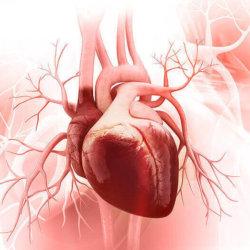 Диагностика и классификация кардиомиопатий