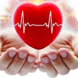Аритмия и тахикардия: почему возникают и чем отличаются?