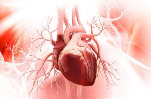 Кардиомиопатия – это группа заболеваний миокарда, которые сопровождаются дисфункцией сердца