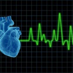 Нарушение ритма сердца: причины и классификация аритмий