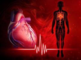 Вызвать аритмию могут как сердечные, так и внесердечные заболевания