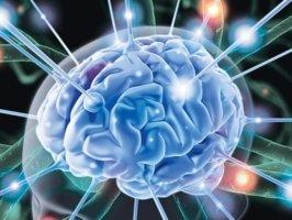 Инсульт – это острое нарушение мозгового кровообращения с опасными для жизни последствиями