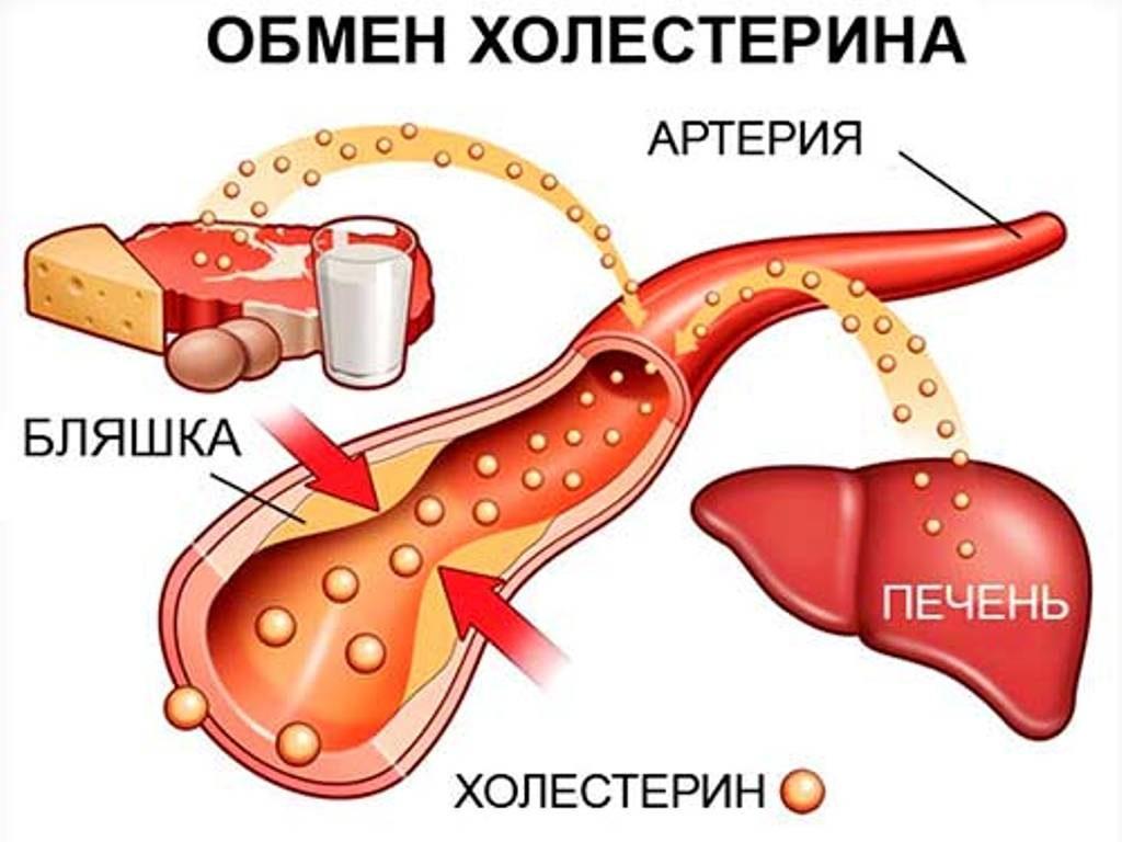 Какие таблетки от холестерина лучше: виды, действие