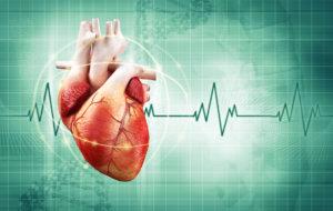 сердце колотится как бешеное что делать