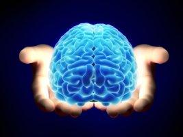 Долгие приступы эпилепсии могут вызвать необратимые повреждения клеток головного мозга