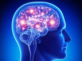 Потеря сознания возникает внезапно из-за нарушения мозгового кровотока