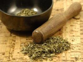 Из растения в лечебных целях можно делать отвары, настои и примочки