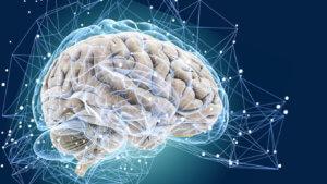 При парасимпатическом типе нервной системы принимать лекарство запрещено!