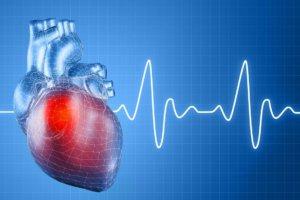 можно ли есть перед экг сердца