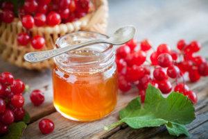Калина с медом укрепляет сердечную мышцу и нормализует АД при гипертонии