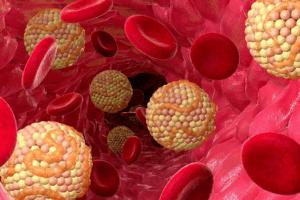 Холестерин – этот липид, который выполняет много важный функций в организме