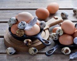 В яйцах содержатся витамин Е, который препятствует развитию атеросклероза