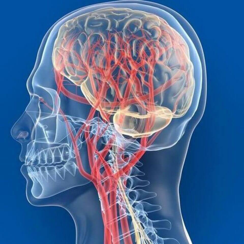 Недостаточность мозгового кровообращения: симптомы и лечение