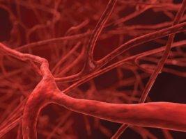 Препарат назначают при заболеваниях с повышенной проницаемостью сосудов