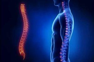 Клинические проявления зависят от стадии и формы болезни
