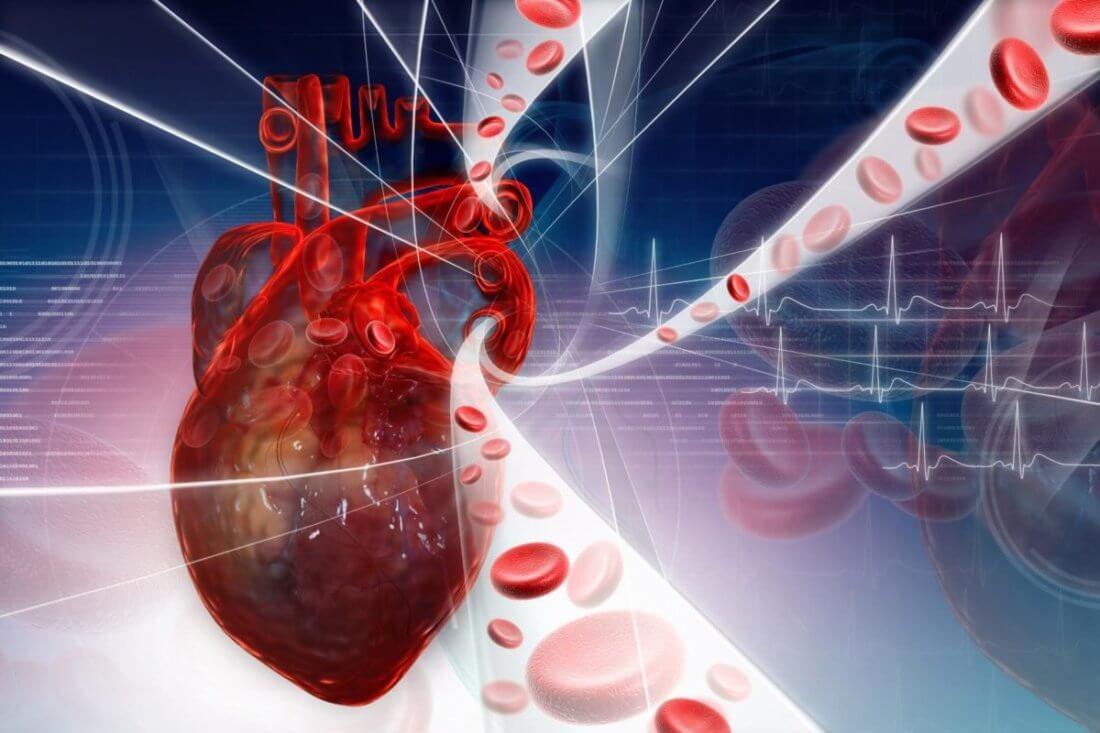 Пульс после инфаркта миокарда ⋆ Лечение Сердца