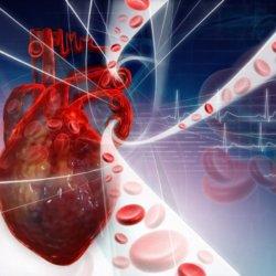 Каким может быть давление и пульс при инфаркте миокарда?