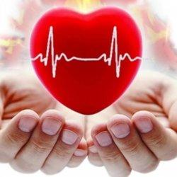 Какие продукты укрепляют сердце — продукты и их польза
